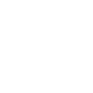 lambs tire icon